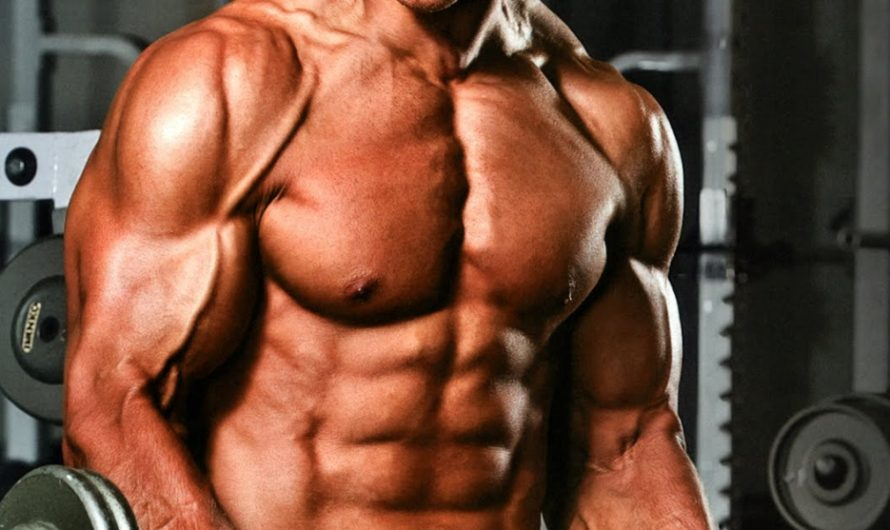 Anadrole Review on the Legal Steroid Alternative Crazybulk